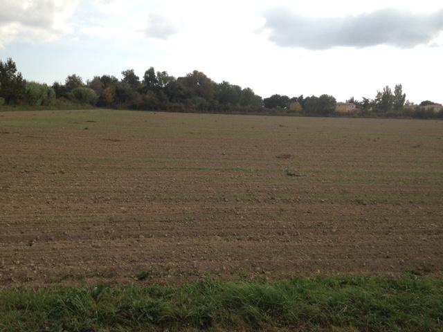 Vente terrain le sambuc 13200 for Terrain non constructible 06